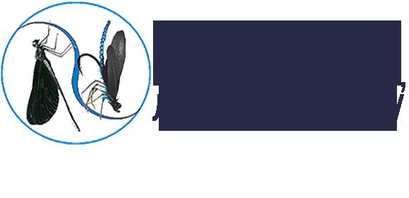 "Интернет-магазин ""fliege.ru"""