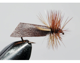 Caddis brown