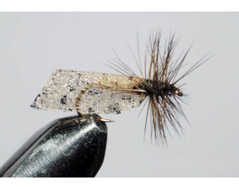 Caddis brown