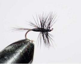 Mosquito black