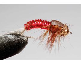 Нимфа Stonefly orange