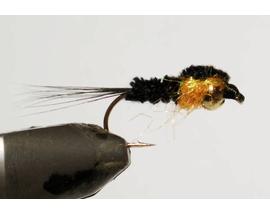 Нимфа Montana black-orange