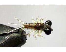 Личинка поденки с глазами оливковая