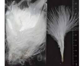 Перья марабу mini White