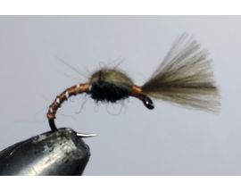 CDC emerger special brown