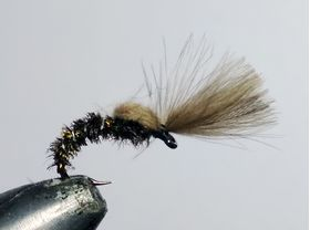 CDC emerger special peacock