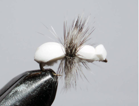 мушка муравей White ant