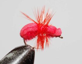 мушка муравей Red Ant