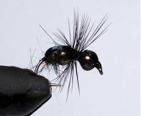 Муравей Black Ant dubble head