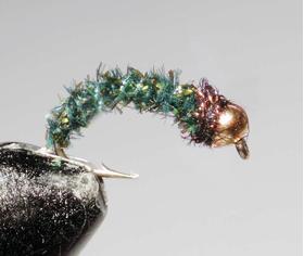 Нимфа GH cactus peacock