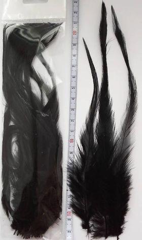 Перья петуха черные